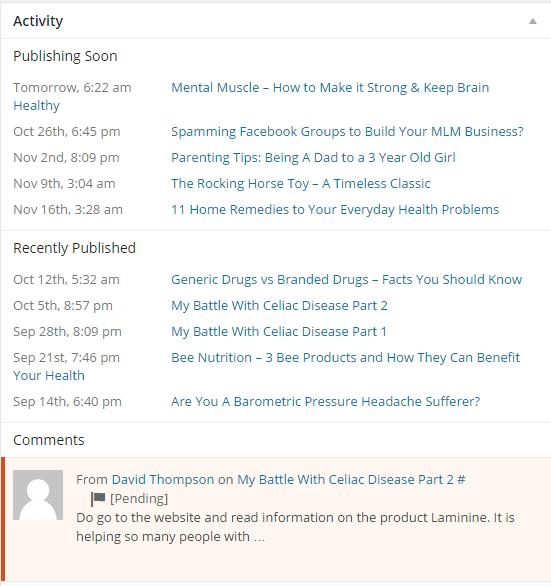 WordPress activity